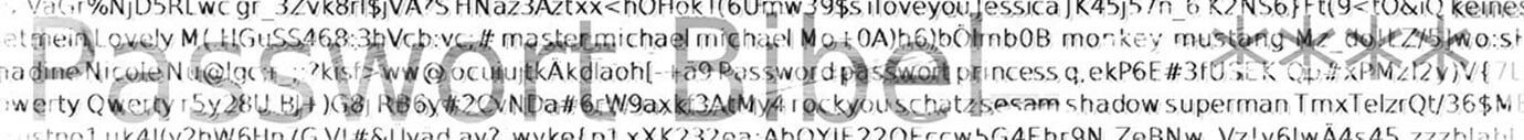 Passwort Bibel